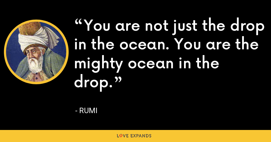 You are not just the drop in the ocean. You are the mighty ocean in the drop. - Rumi