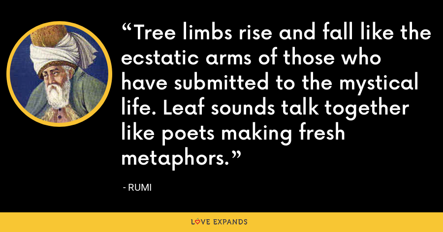 Tree limbs rise and fall like the ecstatic arms of those who have submitted to the mystical life. Leaf sounds talk together like poets making fresh metaphors. - Rumi