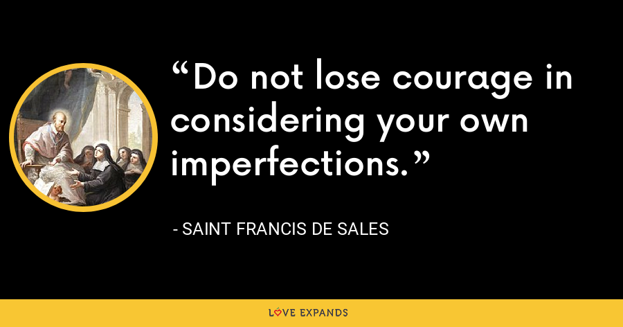 Do not lose courage in considering your own imperfections. - Saint Francis de Sales