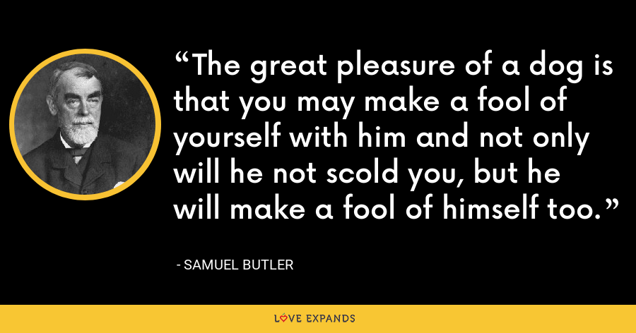 The great pleasure of a dog is that you may make a fool of yourself with him and not only will he not scold you, but he will make a fool of himself too. - Samuel Butler