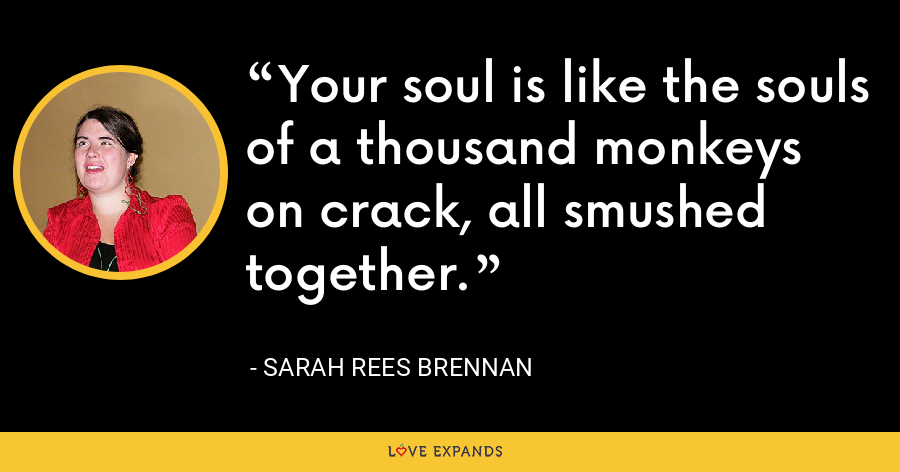 Your soul is like the souls of a thousand monkeys on crack, all smushed together. - Sarah Rees Brennan