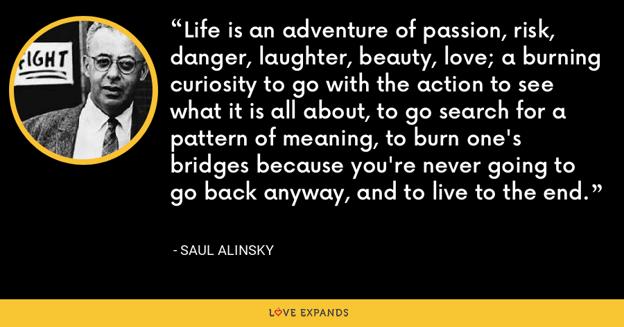 Life is an adventure of passion, risk, danger, laughter, beauty, love; a burning curiosity to go with the action to see what it is all about, to go search for a pattern of meaning, to burn one's bridges because you're never going to go back anyway, and to live to the end. - Saul Alinsky
