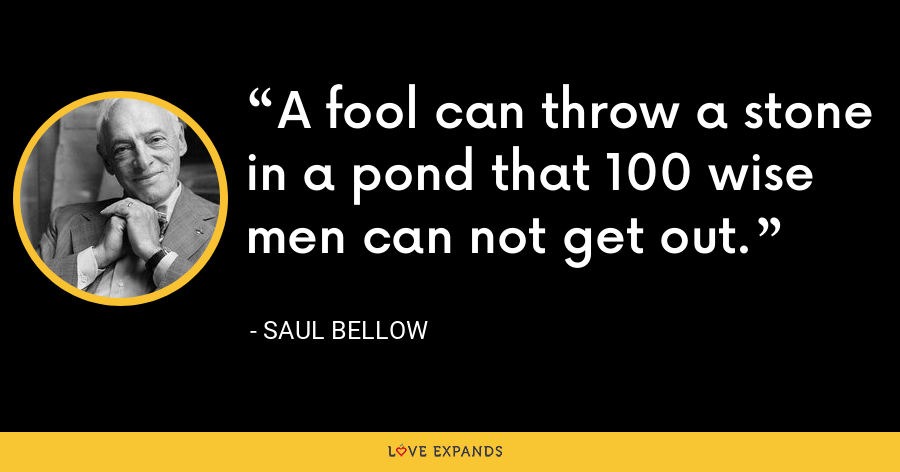 A fool can throw a stone in a pond that 100 wise men can not get out. - Saul Bellow