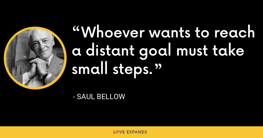 Whoever wants to reach a distant goal must take small steps. - Saul Bellow