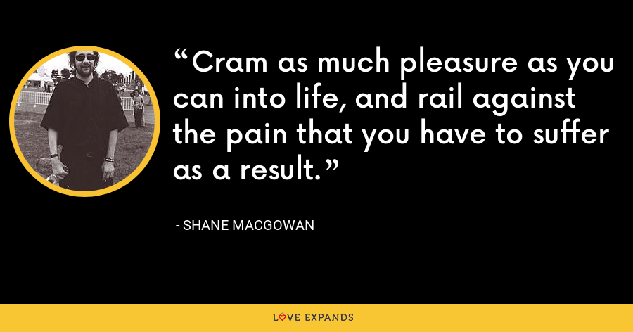 Cram as much pleasure as you can into life, and rail against the pain that you have to suffer as a result. - Shane MacGowan