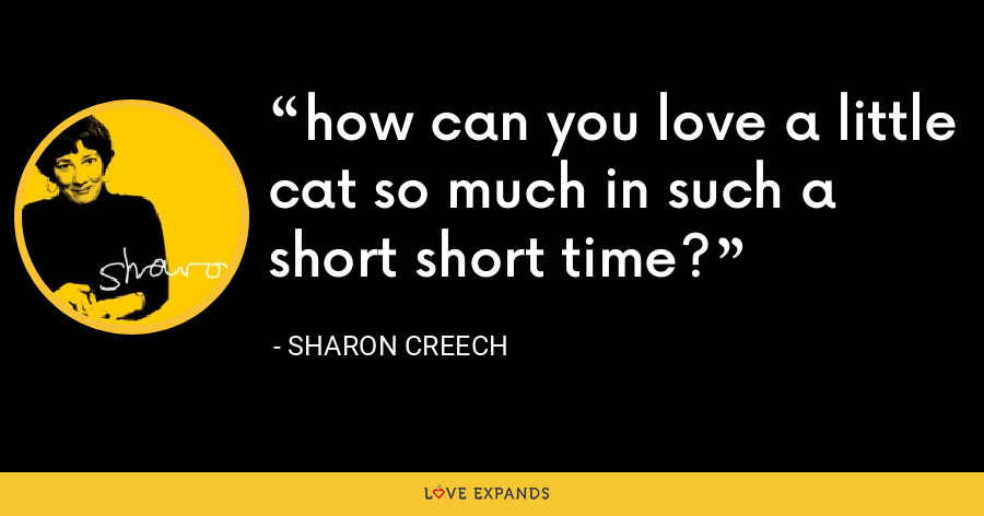 how can you love a little cat so much in such a short short time? - Sharon Creech