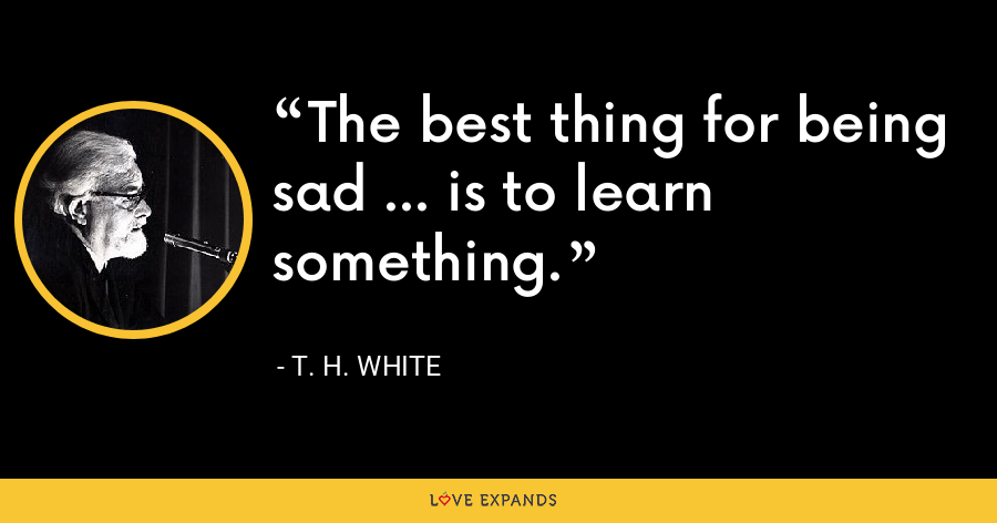The best thing for being sad ... is to learn something. - T. H. White