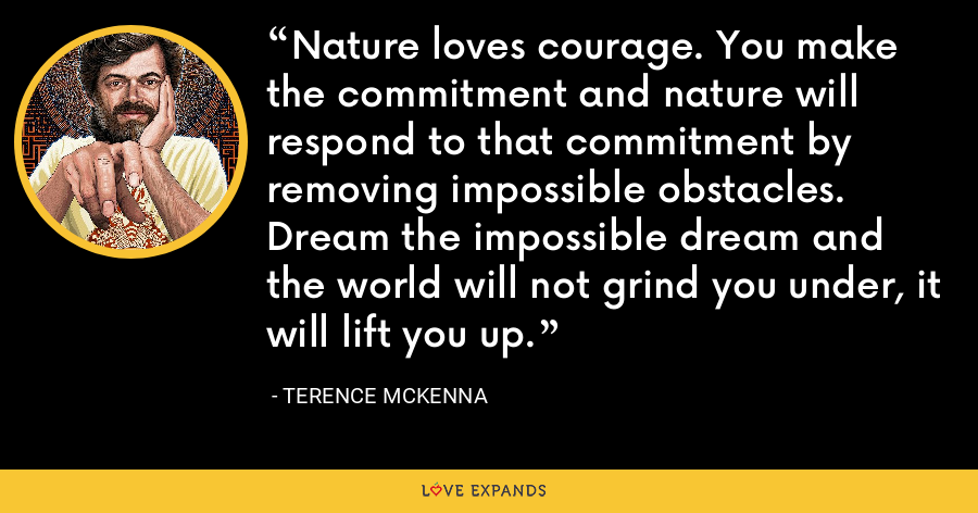 Nature loves courage. You make the commitment and nature will respond to that commitment by removing impossible obstacles. Dream the impossible dream and the world will not grind you under, it will lift you up. - Terence McKenna