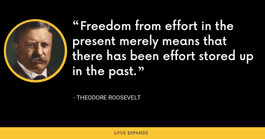 Freedom from effort in the present merely means that there has been effort stored up in the past. - Theodore Roosevelt