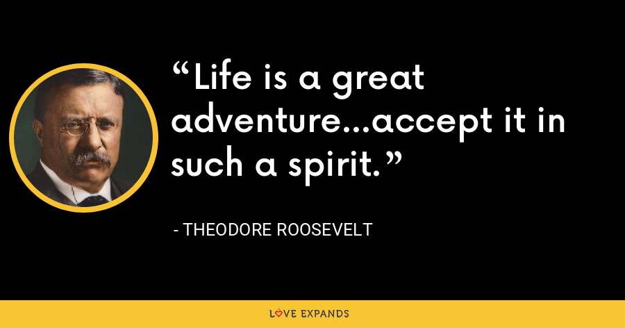 Life is a great adventure…accept it in such a spirit. - Theodore Roosevelt