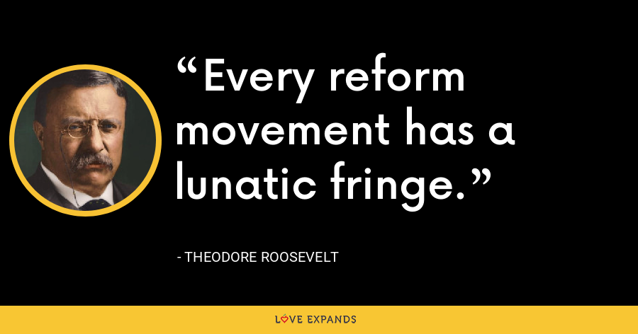 Every reform movement has a lunatic fringe. - Theodore Roosevelt