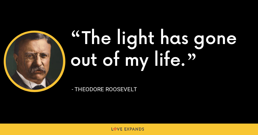 The light has gone out of my life. - Theodore Roosevelt