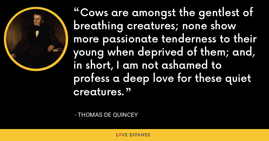 Cows are amongst the gentlest of breathing creatures; none show more passionate tenderness to their young when deprived of them; and, in short, I am not ashamed to profess a deep love for these quiet creatures. - Thomas de Quincey