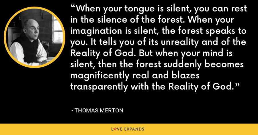 When your tongue is silent, you can rest in the silence of the forest. When your imagination is silent, the forest speaks to you. It tells you of its unreality and of the Reality of God. But when your mind is silent, then the forest suddenly becomes magnificently real and blazes transparently with the Reality of God. - Thomas Merton