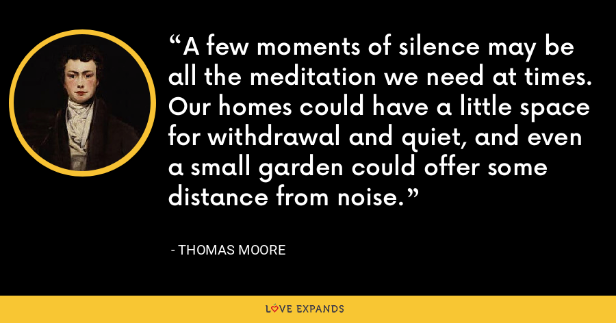 A few moments of silence may be all the meditation we need at times. Our homes could have a little space for withdrawal and quiet, and even a small garden could offer some distance from noise. - Thomas Moore