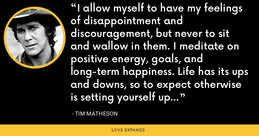 I allow myself to have my feelings of disappointment and discouragement, but never to sit and wallow in them. I meditate on positive energy, goals, and long-term happiness. Life has its ups and downs, so to expect otherwise is setting yourself up for disappointment. - Tim Matheson