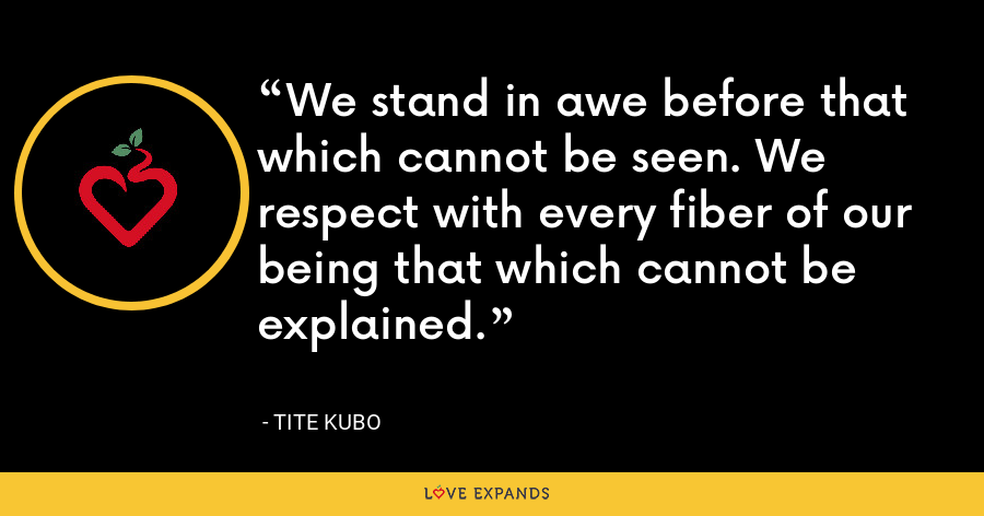 We stand in awe before that which cannot be seen. We respect with every fiber of our being that which cannot be explained. - Tite Kubo