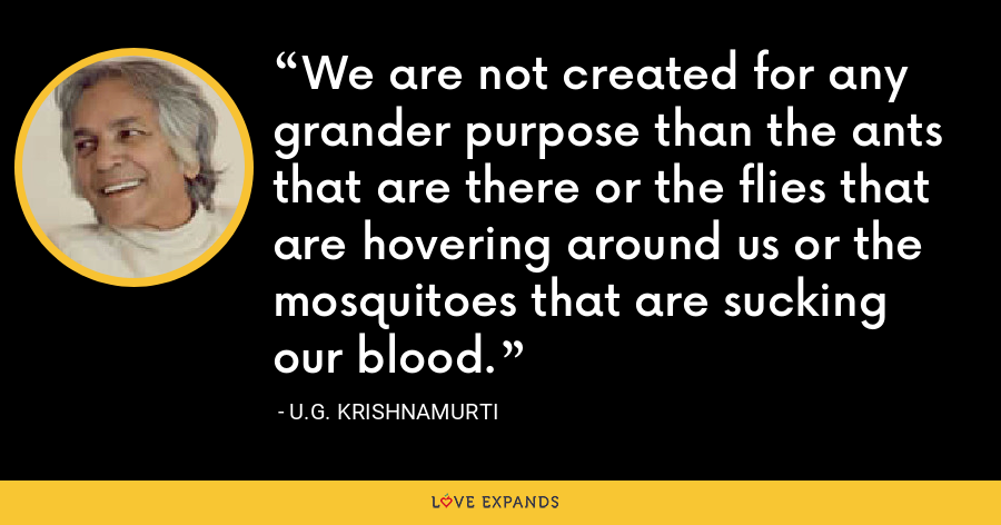 We are not created for any grander purpose than the ants that are there or the flies that are hovering around us or the mosquitoes that are sucking our blood. - U.G. Krishnamurti