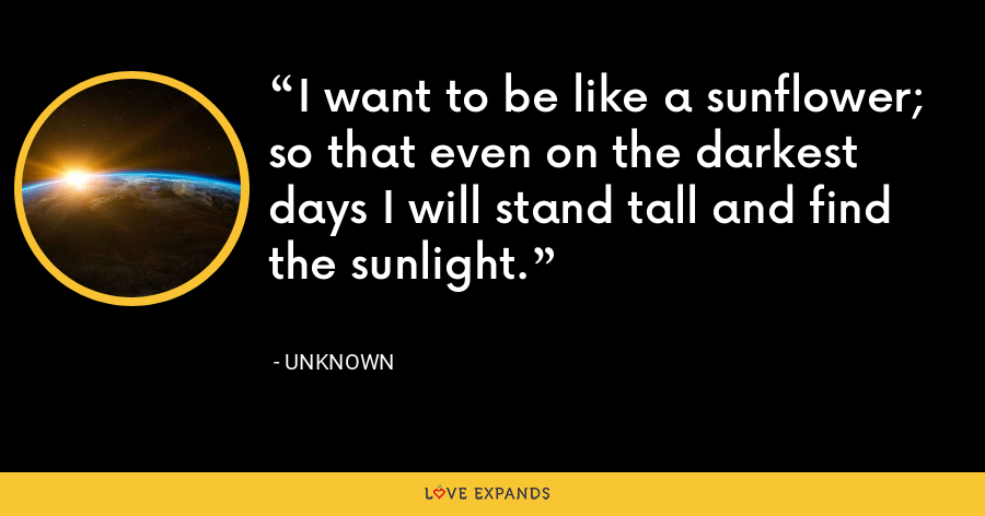 I want to be like a sunflower; so that even on the darkest days I will stand tall and find the sunlight. - Unknown
