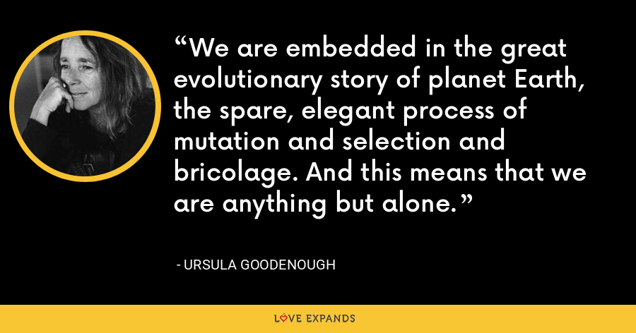 We are embedded in the great evolutionary story of planet Earth, the spare, elegant process of mutation and selection and bricolage. And this means that we are anything but alone. - Ursula Goodenough