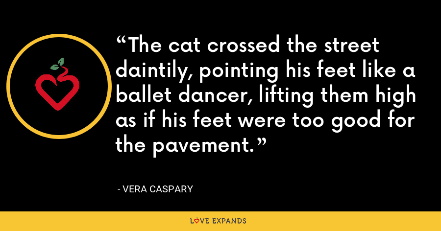 The cat crossed the street daintily, pointing his feet like a ballet dancer, lifting them high as if his feet were too good for the pavement. - Vera Caspary