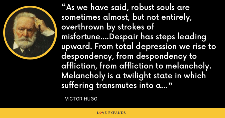 As we have said, robust souls are sometimes almost, but not entirely, overthrown by strokes of misfortune....Despair has steps leading upward. From total depression we rise to despondency, from despondency to affliction, from affliction to melancholy. Melancholy is a twilight state in which suffering transmutes into a somber joy....Melancholy is the enjoyment of being sad. - Victor Hugo