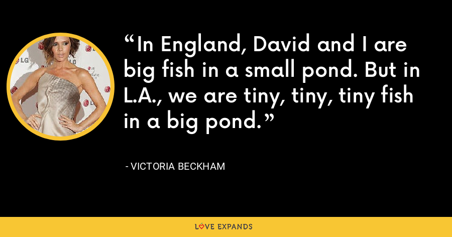 In England, David and I are big fish in a small pond. But in L.A., we are tiny, tiny, tiny fish in a big pond. - Victoria Beckham