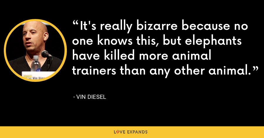 It's really bizarre because no one knows this, but elephants have killed more animal trainers than any other animal. - Vin Diesel