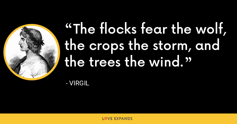 The flocks fear the wolf, the crops the storm, and the trees the wind. - Virgil