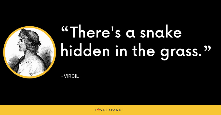 There's a snake hidden in the grass. - Virgil