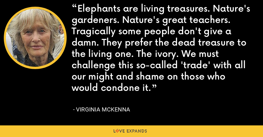 Elephants are living treasures. Nature's gardeners. Nature's great teachers. Tragically some people don't give a damn. They prefer the dead treasure to the living one. The ivory. We must challenge this so-called 'trade' with all our might and shame on those who would condone it. - Virginia McKenna