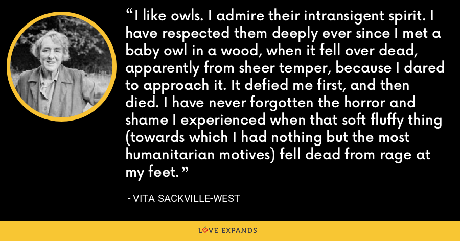 I like owls. I admire their intransigent spirit. I have respected them deeply ever since I met a baby owl in a wood, when it fell over dead, apparently from sheer temper, because I dared to approach it. It defied me first, and then died. I have never forgotten the horror and shame I experienced when that soft fluffy thing (towards which I had nothing but the most humanitarian motives) fell dead from rage at my feet. - Vita Sackville-West