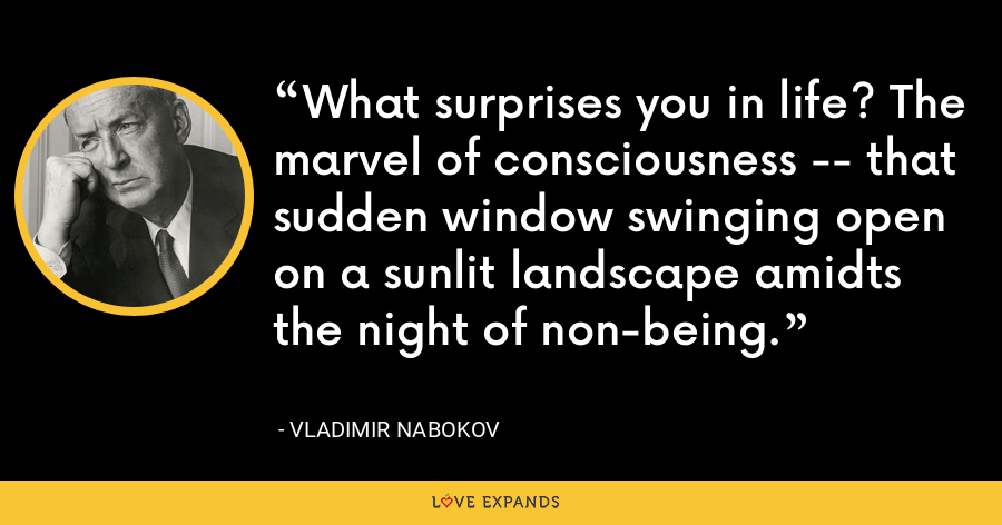What surprises you in life? The marvel of consciousness -- that sudden window swinging open on a sunlit landscape amidts the night of non-being. - Vladimir Nabokov