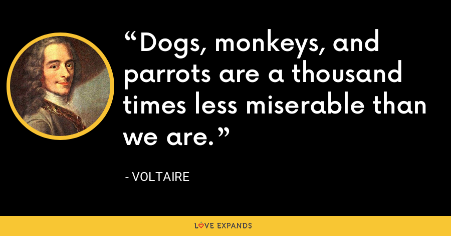 Dogs, monkeys, and parrots are a thousand times less miserable than we are. - Voltaire