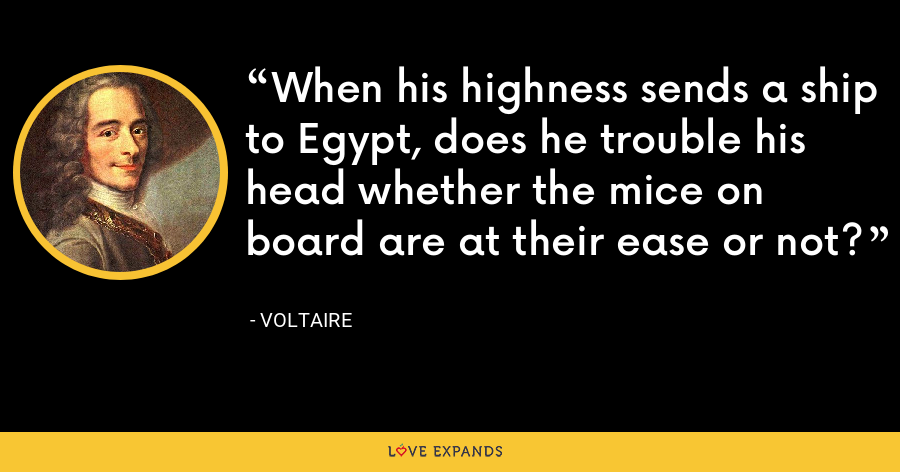 When his highness sends a ship to Egypt, does he trouble his head whether the mice on board are at their ease or not? - Voltaire