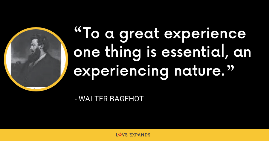 To a great experience one thing is essential, an experiencing nature. - Walter Bagehot