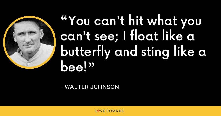 You can't hit what you can't see; I float like a butterfly and sting like a bee! - Walter Johnson