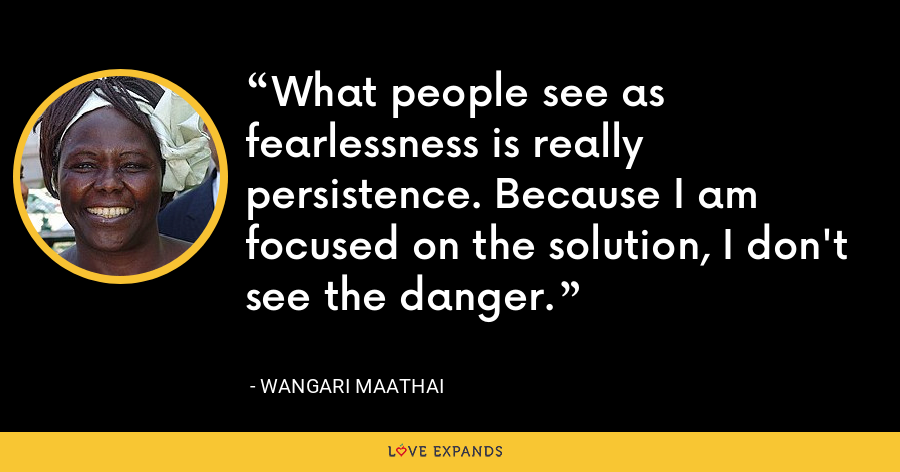 What people see as fearlessness is really persistence. Because I am focused on the solution, I don't see the danger. - Wangari Maathai