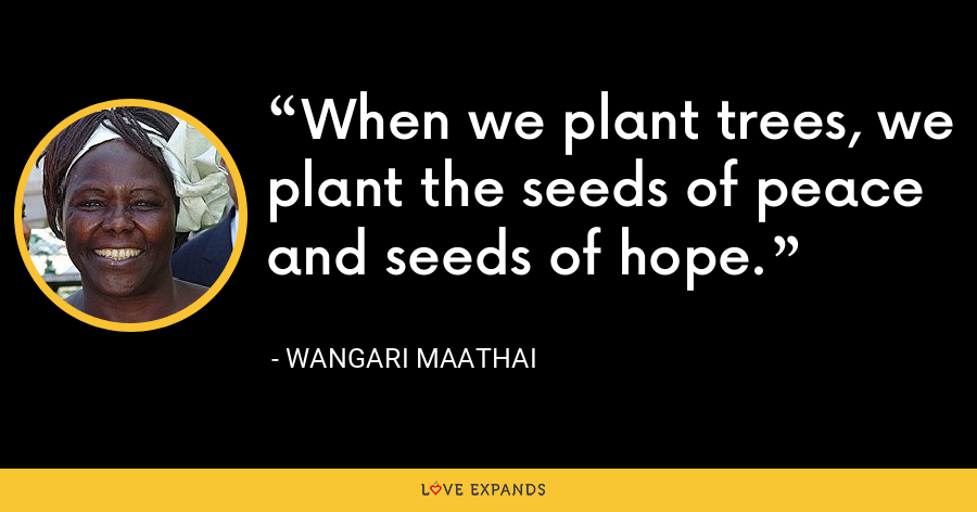 When we plant trees, we plant the seeds of peace and seeds of hope. - Wangari Maathai