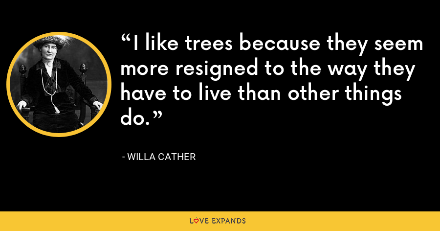 I like trees because they seem more resigned to the way they have to live than other things do. - Willa Cather