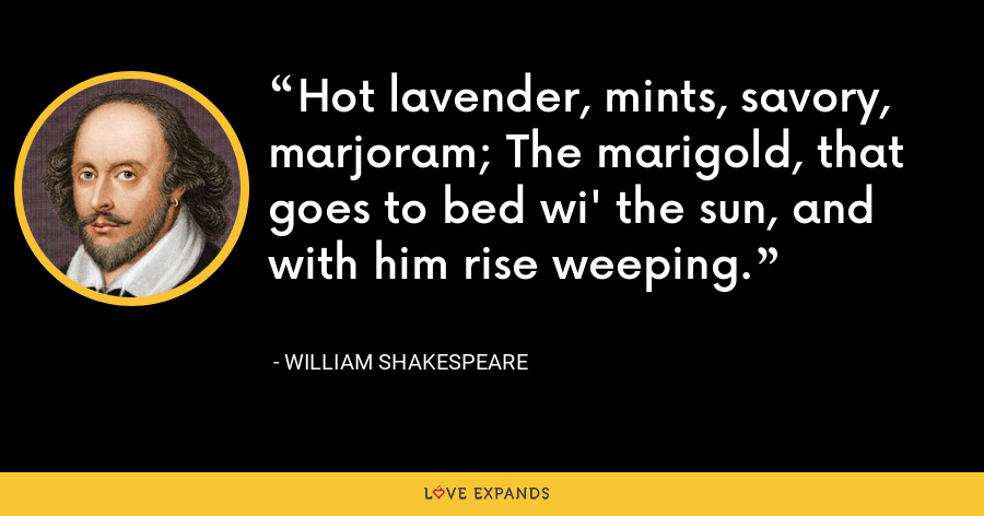 Hot lavender, mints, savory, marjoram; The marigold, that goes to bed wi' the sun, and with him rise weeping. - William Shakespeare
