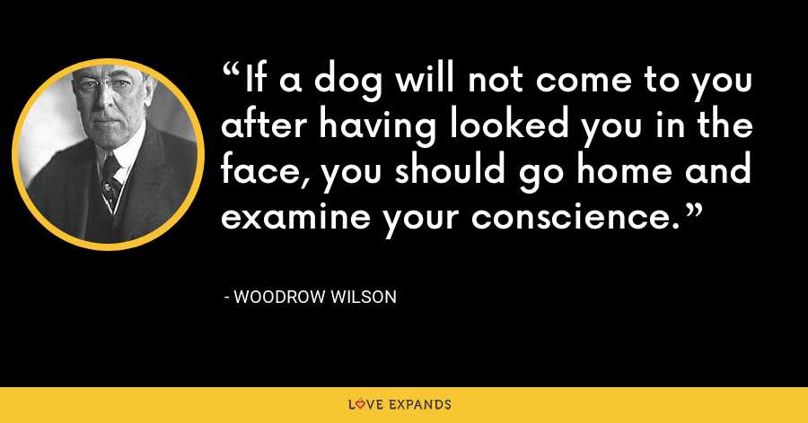 If a dog will not come to you after having looked you in the face, you should go home and examine your conscience. - Woodrow Wilson