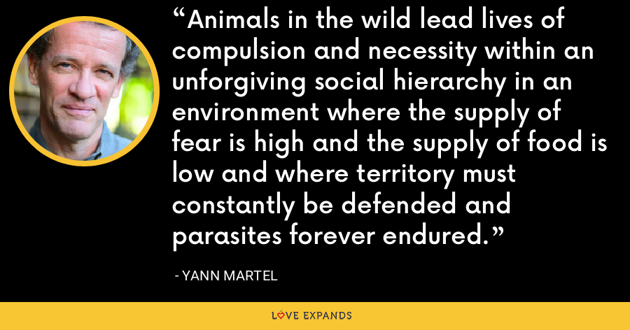 Animals in the wild lead lives of compulsion and necessity within an unforgiving social hierarchy in an environment where the supply of fear is high and the supply of food is low and where territory must constantly be defended and parasites forever endured. - Yann Martel