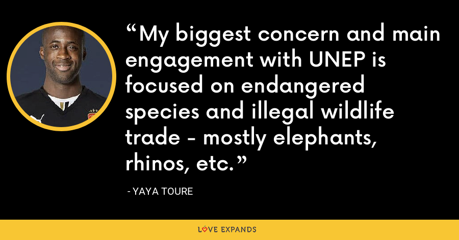 My biggest concern and main engagement with UNEP is focused on endangered species and illegal wildlife trade - mostly elephants, rhinos, etc. - Yaya Toure