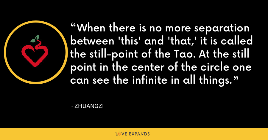 When there is no more separation between 'this' and 'that,' it is called the still-point of the Tao. At the still point in the center of the circle one can see the infinite in all things. - Zhuangzi