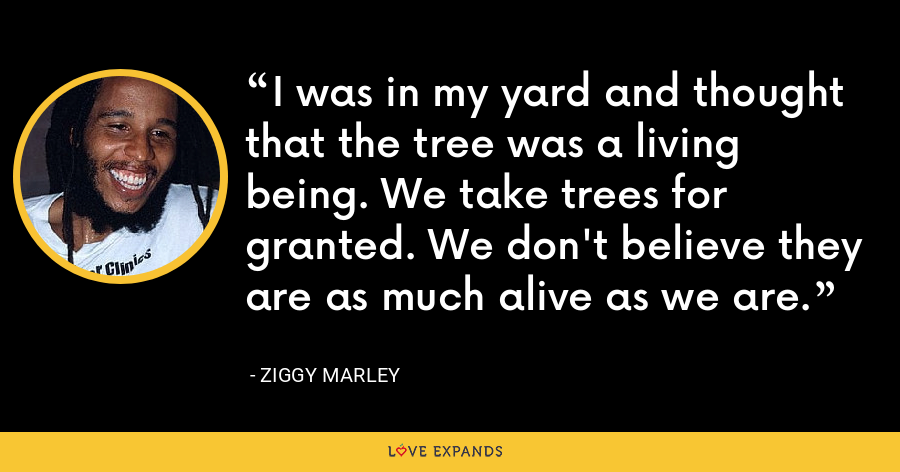 I was in my yard and thought that the tree was a living being. We take trees for granted. We don't believe they are as much alive as we are. - Ziggy Marley