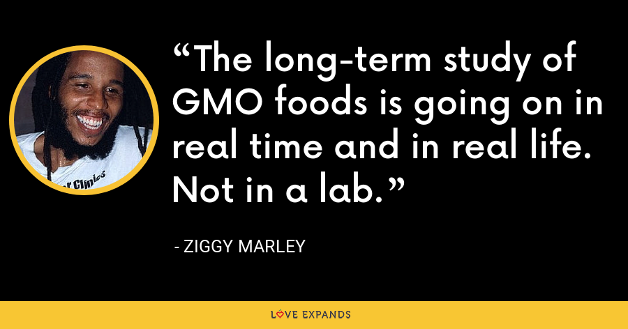 The long-term study of GMO foods is going on in real time and in real life. Not in a lab. - Ziggy Marley